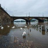 Povodňová situace na Vltavě - květen 2014