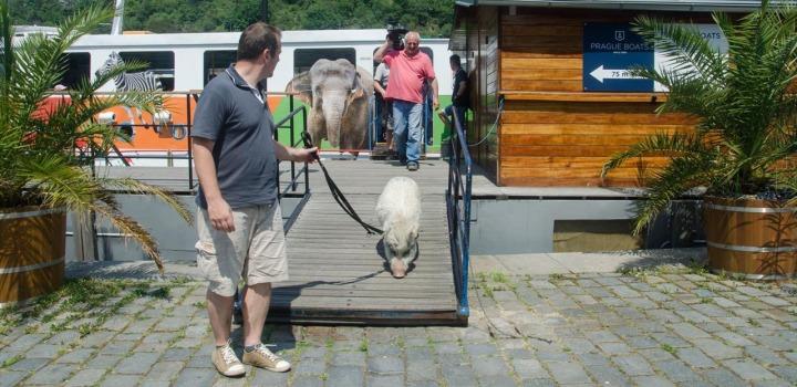 První plavby do zoo o velikonočním víkendu